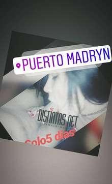 Lolamora en puerto madryn chubut argentina solo 5 dias