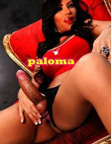 Transexual paloma en blanes guapisima 698 326 017